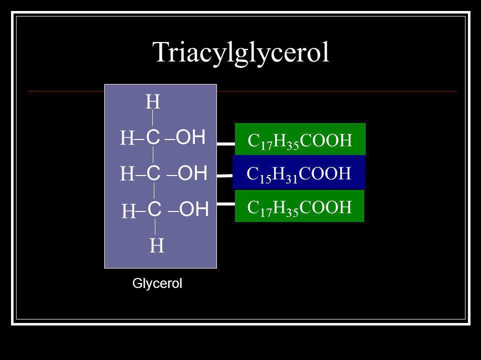 Triacylglycerol ─ C ─ OH H H H H H Stearic Acid Palmitic Acid Stearic Acid C 15 H 31 COOH C 17 H 35 COOH Glycerol
