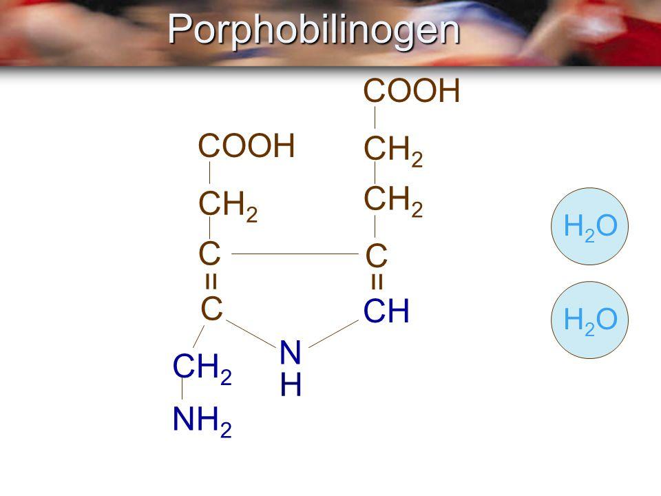 COOH CH 2 C C COOH CH 2 C NH 2 CH = =Porphobilinogen H N H2OH2OH2OH2O