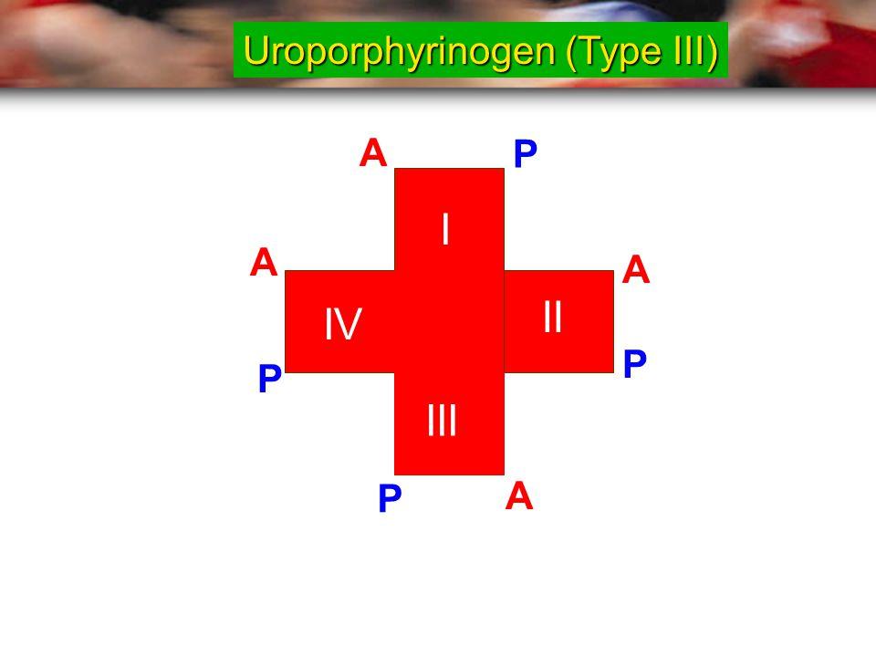 I II III IV A P A A A P P P Uroporphyrinogen (Type III)
