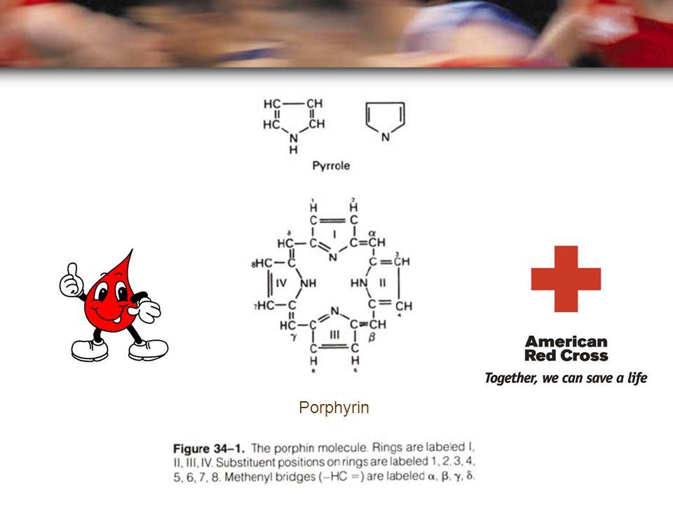 I II III IV M V M M M V P P Protoporphyrin (Type III) (Vinyl : CH=CH 2 ) + Fe 2+ Ferrochelatase M=Methyl V= Vinyl P=Propionyl