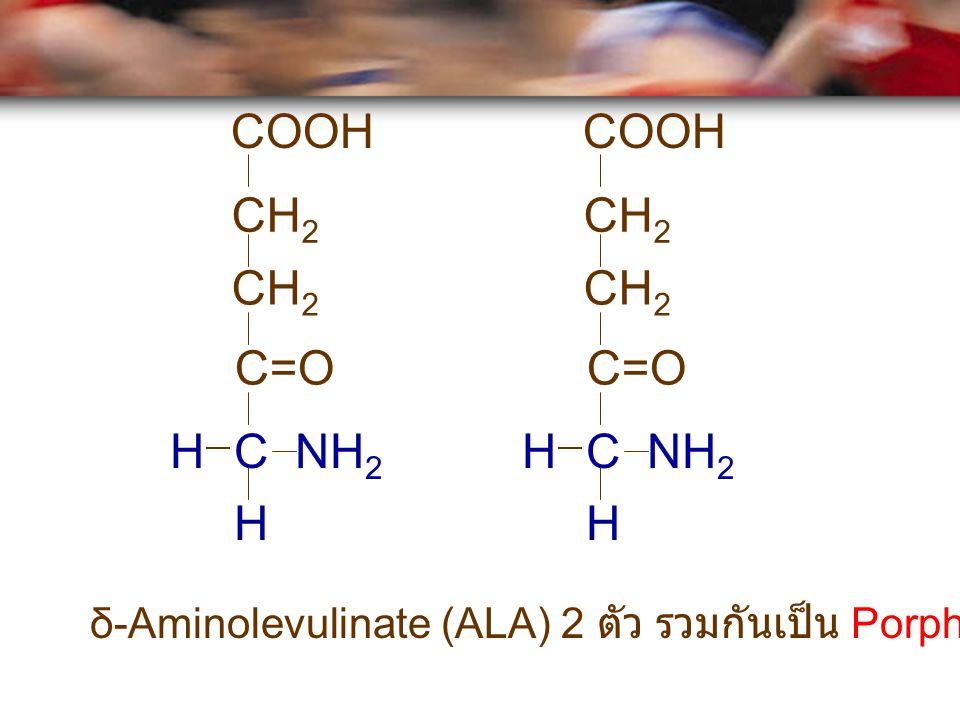 Porphobilinogen เป็นสารประกอบ เริ่มต้น (precursor) ของการสังเคราะห์ Pyrrole + N 2 ALAPorphobilinogenPyrrole