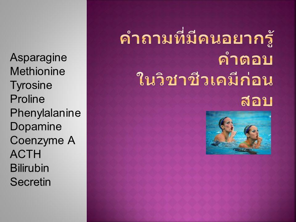 Asparagine Methionine Tyrosine Proline Phenylalanine Dopamine Coenzyme A ACTH Bilirubin Secretin