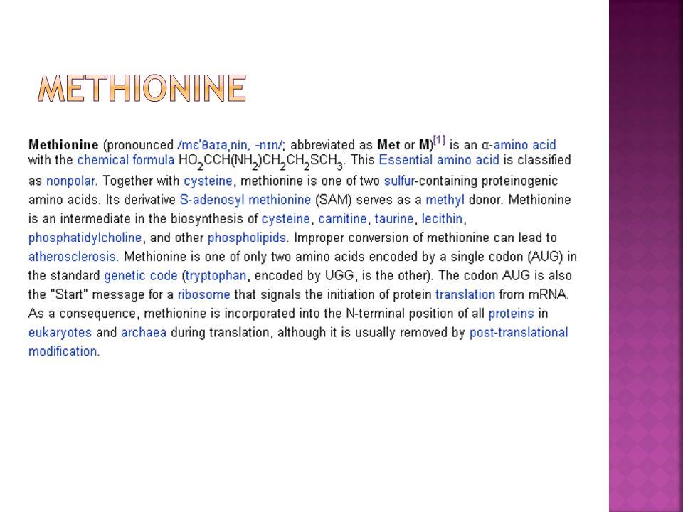  Amino acid ตัวนี้มีโครงสร้างที่มี Side chain เป็น Benzene ring (aromatic ring) คล้ายกับ amino acid ใด  Tyrosine เป็น Essential amino acid หรือไม่  Tyrosine เป็น amino acid ที่ใช้เริ่มต้นในการ สังเคราะห์ hormones ใดบ้าง - Hormone ที่ผลิตจากต่อม Thyroid - Hormones จำพวก Catecholamine C NH 2 H COOH CH 2 HO