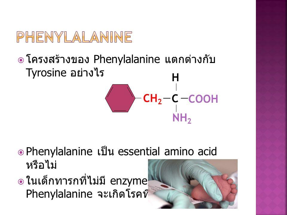  โครงสร้างของ Phenylalanine แตกต่างกับ Tyrosine อย่างไร  Phenylalanine เป็น essential amino acid หรือไม่  ในเด็กทารกที่ไม่มี enzyme ที่ไปย่อยอาหารท