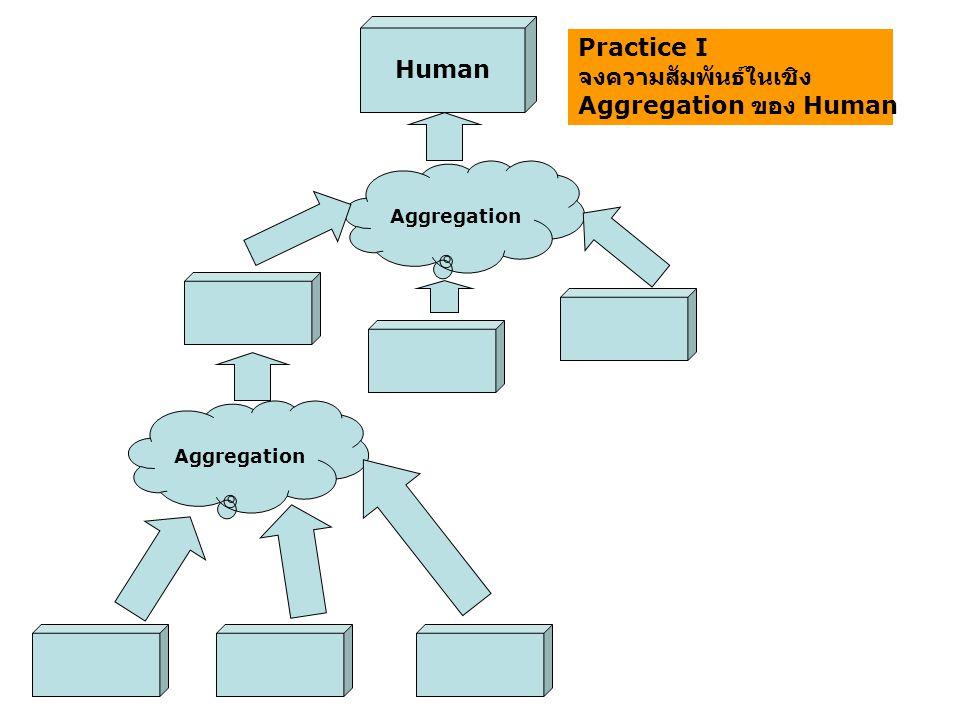 Human Aggregation Practice I จงความสัมพันธ์ในเชิง Aggregation ของ Human