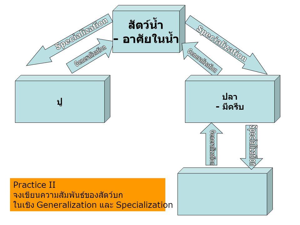 สัตว์น้ำ - อาศัยในน้ำ ปู ปลา - มีครีบ Practice II จงเขียนความสัมพันธ์ของสัตว์บก ในเชิง Generalization และ Specialization