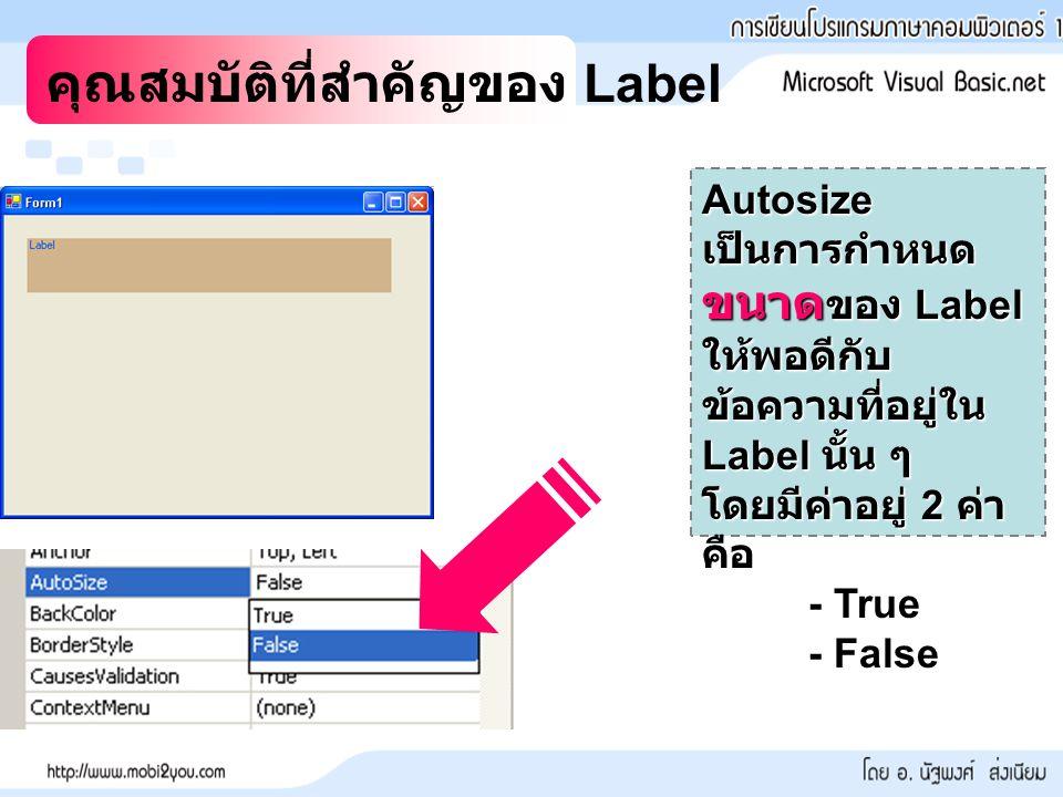 คุณสมบัติที่สำคัญของ Label Autosize เป็นการกำหนด ขนาด ของ Label ให้พอดีกับ ข้อความที่อยู่ใน Label นั้น ๆ โดยมีค่าอยู่ 2 ค่า คือ - True - False