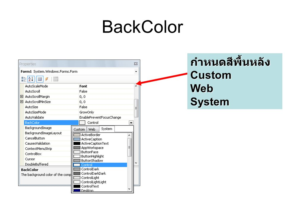 BackColor กำหนดสีพื้นหลังCustomWebSystem