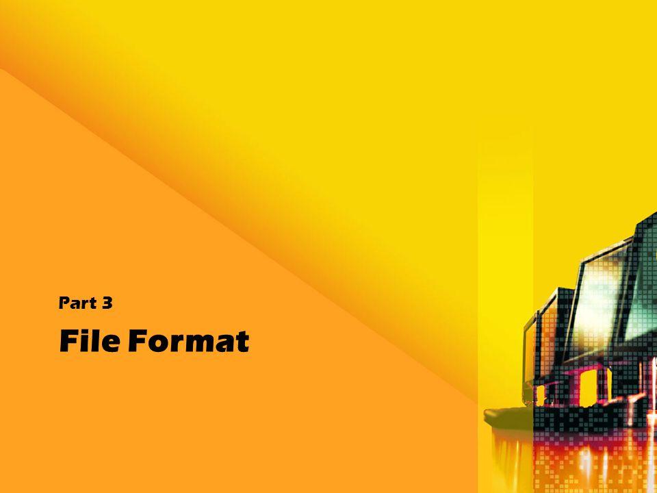 File Format Part 3