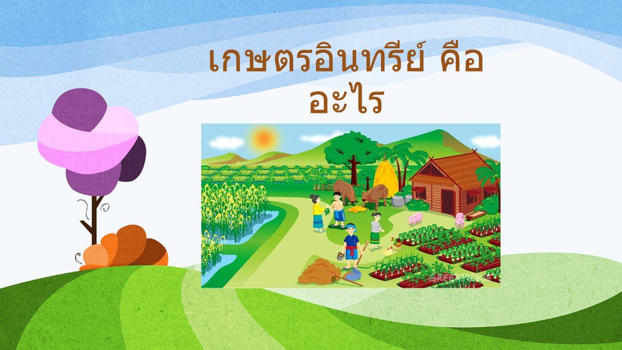 เกษตรอินทรีย์คือ ระบบการผลิตที่คำนึงถึงสภาพแวดล้อมรักษาสมดุลของ ธรรมชาติและความหลากหลายของทางชีวภาพ หลีกเลี่ยงการใช้สารสังเคราะห์ไม่ว่าจะเป็นปุ๋ยเคมี สารเคมีกำจัดศัตรูพืชและฮอร์โมนต่าง ๆ ไม่ใช้พืชหรือ สัตว์ที่เกิดจากการตัดต่อทางพันธุกรรมที่อาจเกิดมลพิษ ในสภาพแวดล้อม เน้นการใช้อินทรีย์วัตถุ เช่น ปุ๋ยคอก ปุ๋ยหมัก ปุ๋ยพืชสด และ ปุ๋ยชีวภาพในการปรับปรุงบำรุงให้มีความอุดม สมบูรณ์