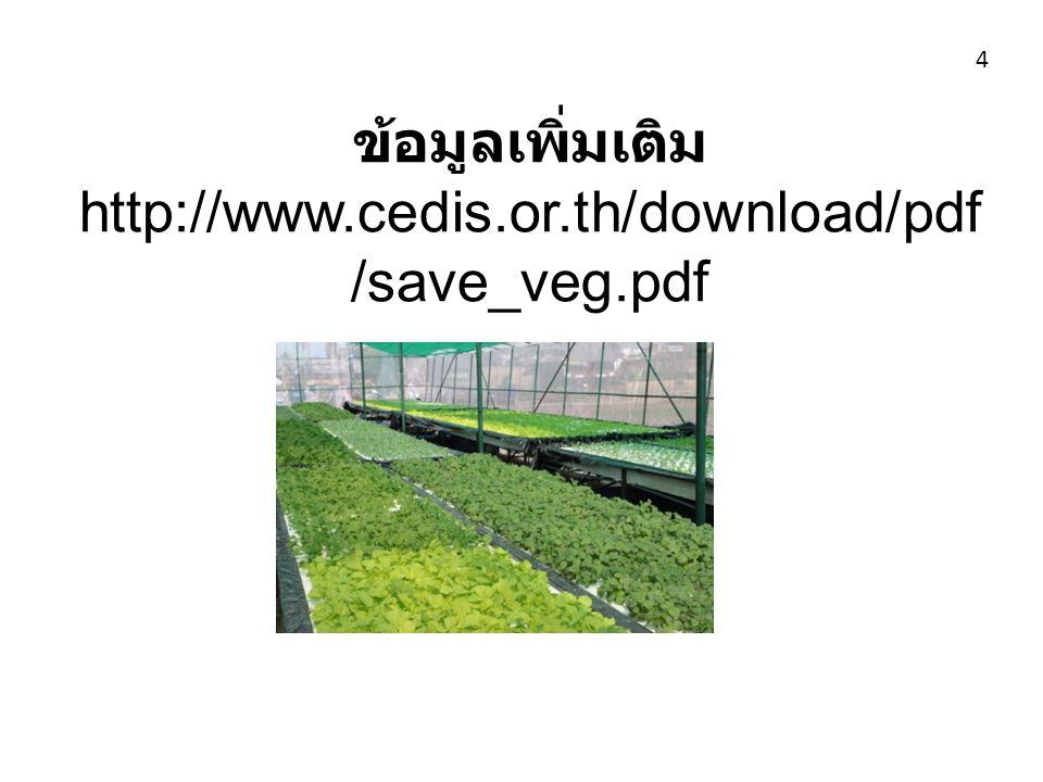 ข้อมูลเพิ่มเติม http://www.cedis.or.th/download/pdf /save_veg.pdf 4