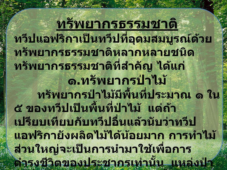 ทะเลทรา ย ป่าดงดิบ