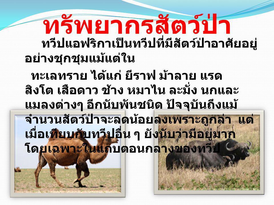 บรรณานุกรม ออนไลน์ เข้าถึง :http://www.thaigoodview.com/library/teac hershow/nongkhai/thanagorn_n/thanagorn02/se c04p05.html:2553http://www.thaigoodview.com/library/teac hershow/nongkhai/thanagorn_n/thanagorn02/se c04p05.html ออนไลน์ เข้าถึง :http://wastana.212cafe.com/archive/2008- 10-17/5:2553http://wastana.212cafe.com/archive/2008- 10-17/5