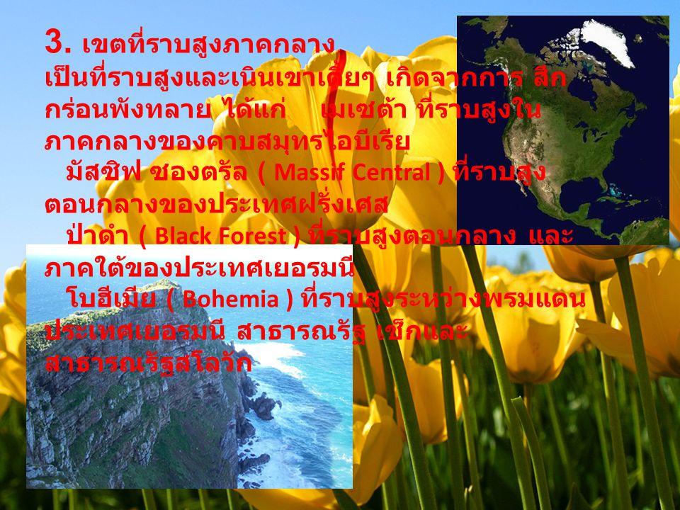 3. เขตที่ราบสูงภาคกลาง เป็นที่ราบสูงและเนินเขาเตี้ยๆ เกิดจากการ สึก กร่อนพังทลาย ได้แก่ เมเซต้า ที่ราบสูงใน ภาคกลางของคาบสมุทรไอบีเรีย มัสซิฟ ซองตรัล