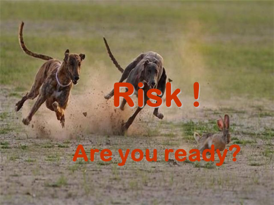 Risk ! Are you ready?
