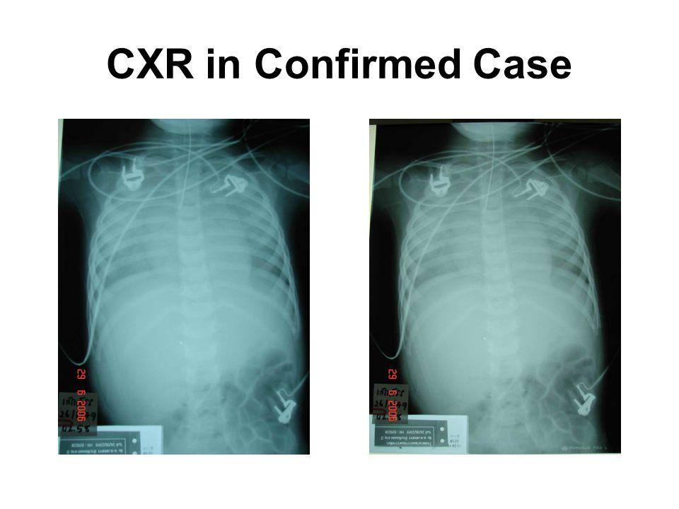 CXR in Confirmed Case