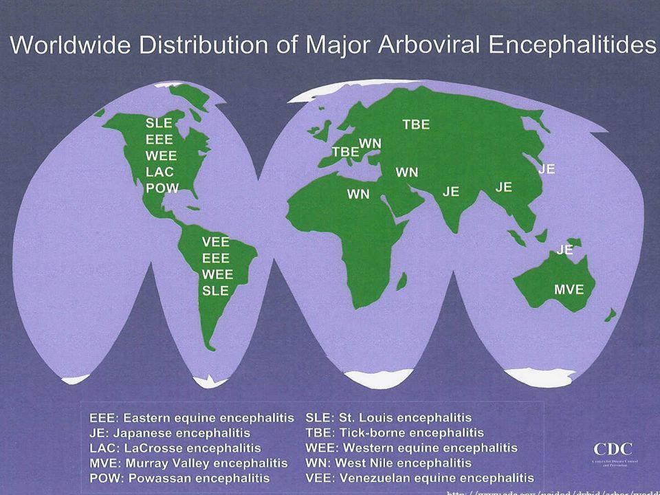 http://www.cdc.gov/ncidod/dvbid/arbor/worldist.pdf