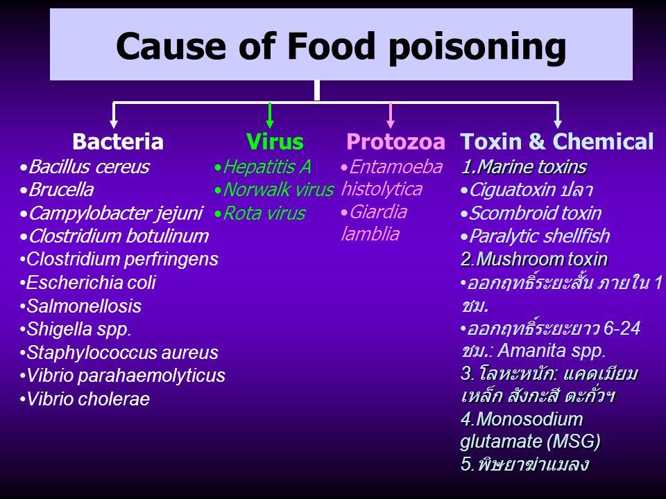 Cause of Food poisoning Bacteria Bacillus cereus Brucella Campylobacter jejuni Clostridium botulinum Clostridium perfringens Escherichia coli Salmonel