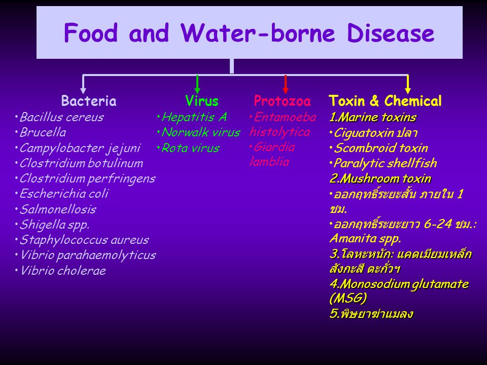 Food and Water-borne Disease Bacteria Bacillus cereus Brucella Campylobacter jejuni Clostridium botulinum Clostridium perfringens Escherichia coli Sal
