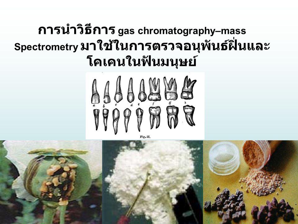 การนำวิธีการ gas chromatography–mass Spectrometry มาใช้ในการตรวจอนุพันธ์ฝิ่นและ โคเคนในฟันมนุษย์