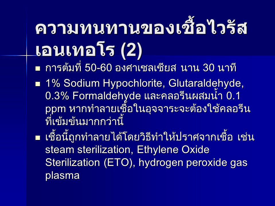 ความทนทานของเชื้อไวรัส เอนเทอโร (2) การต้มที่ 50-60 องศาเซลเซียส นาน 30 นาที การต้มที่ 50-60 องศาเซลเซียส นาน 30 นาที 1% Sodium Hypochlorite, Glutaral