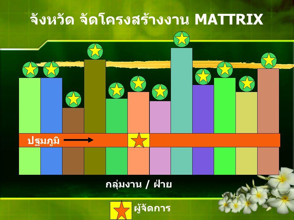 จังหวัด จัดโครงสร้างงาน MATTRIX ปฐมภูมิ กลุ่มงาน / ฝ่าย ผู้จัดการ