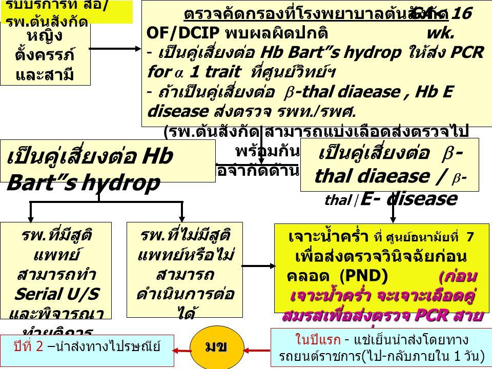 หญิง ตั้งครรภ์ และสามี ตรวจคัดกรองที่โรงพยาบาลต้นสังกัด OF/DCIP พบผลผิดปกติ - เป็นคู่เสี่ยงต่อ Hb Bart s hydrop ให้ส่ง PCR for α 1 trait ที่ศูนย์วิทย์ฯ - ถ้าเป็นคู่เสี่ยงต่อ  -thal diaease, Hb E disease ส่งตรวจ รพท./ รพศ.