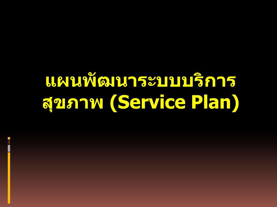 แผนพัฒนาระบบบริการ สุขภาพ (Service Plan)