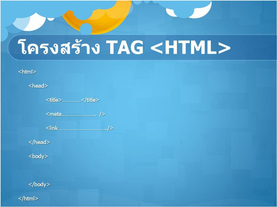 โครงสร้าง TAG <html><head><title>…………</title> </head><body></body></html>