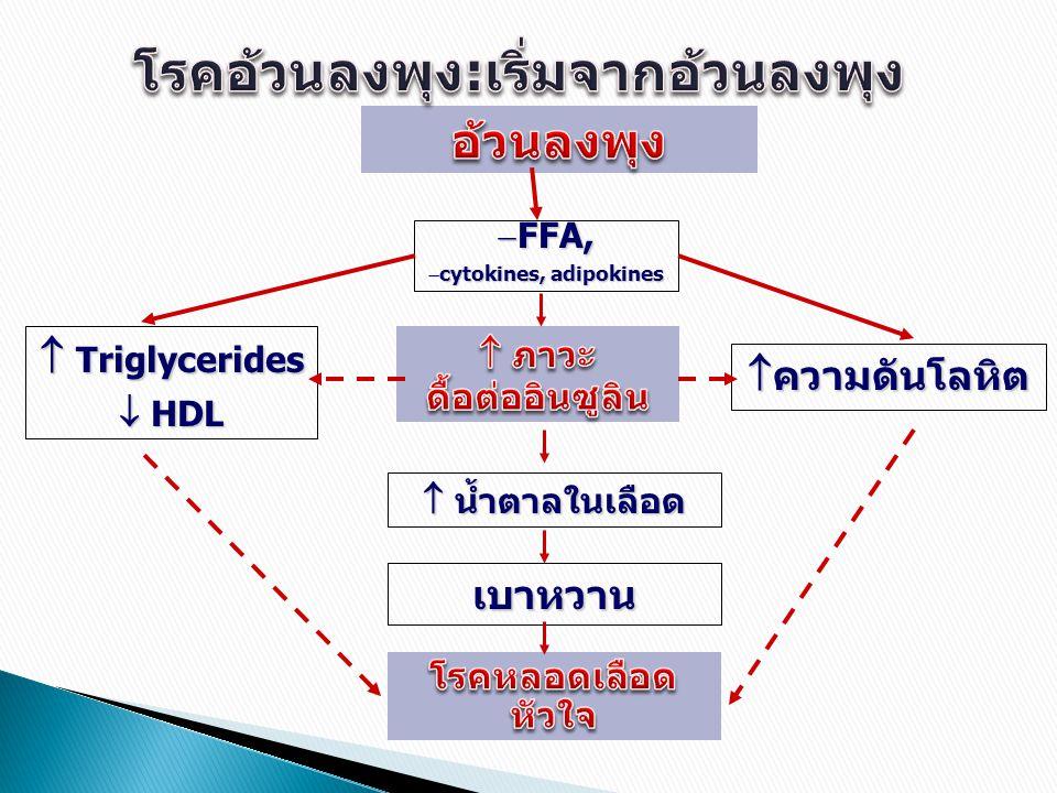  FFA,  cytokines, adipokines  น้ำตาลในเลือด เบาหวาน  Triglycerides  HDL  ความดันโลหิต