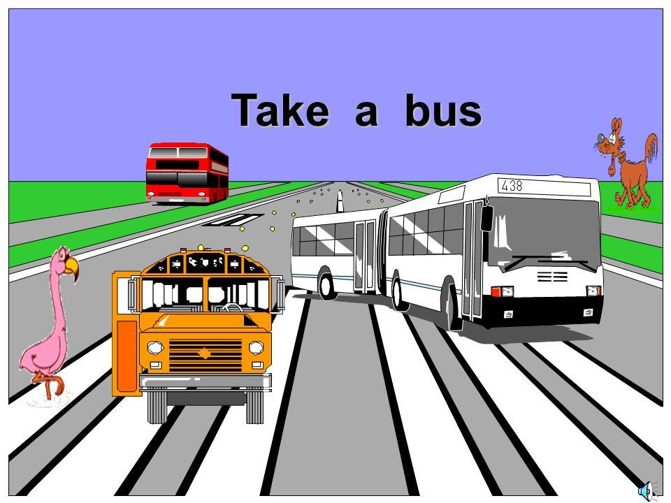Take a bus