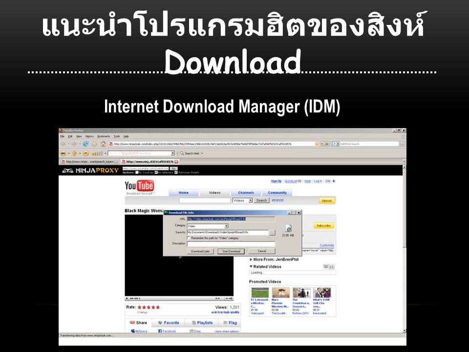 แนะนำโปรแกรมฮิตของสิงห์ Download Internet Download Manager (IDM)