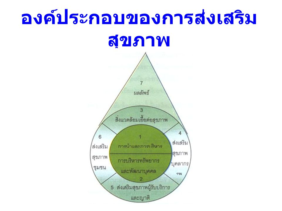 องค์ประกอบของการส่งเสริม สุขภาพ