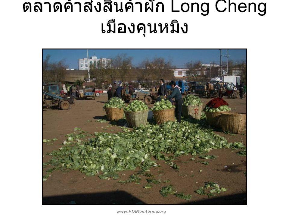 ตลาดค้าส่งสินค้าผัก Long Cheng เมืองคุนหมิง www.FTAMonitoring.org