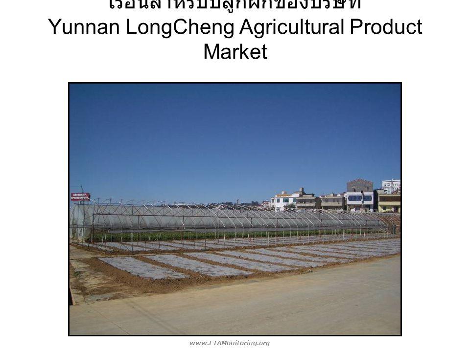 เรือนสำหรับปลูกผักของบริษัท Yunnan LongCheng Agricultural Product Market www.FTAMonitoring.org