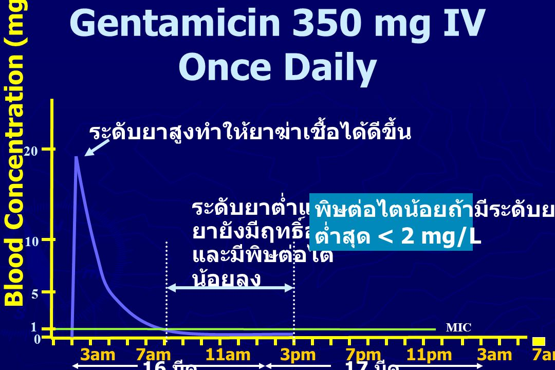 Gentamicin 350 mg IV Once Daily Blood Concentration (mg/L) 20 10 5 0 3am 7am 11am 3pm 7pm 11pm 3am 7am 11am 3pm 7pm 11pm 3pm 16 มีค 17 มีค MIC 1 ระดับ