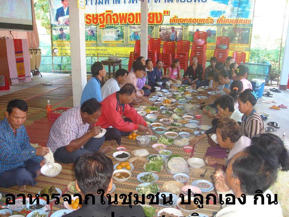 อาหารจากในชุมชน ปลูกเอง กิน เอง ปลอดสารพิษ