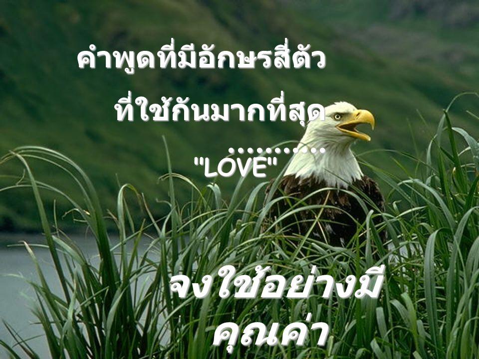 คำพูดที่มีอักษรสี่ตัว ที่ใช้กันมากที่สุด........... LOVE จงใช้อย่างมี คุณค่า