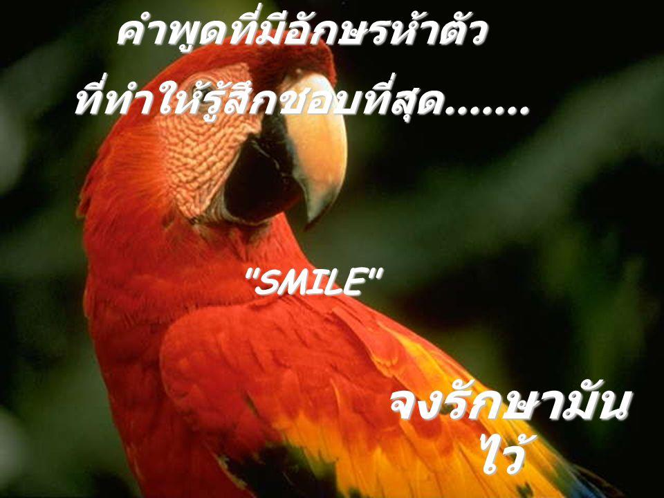 คำพูดที่มีอักษรห้าตัว ที่ทำให้รู้สึกชอบที่สุด....... SMILE จงรักษามัน ไว้