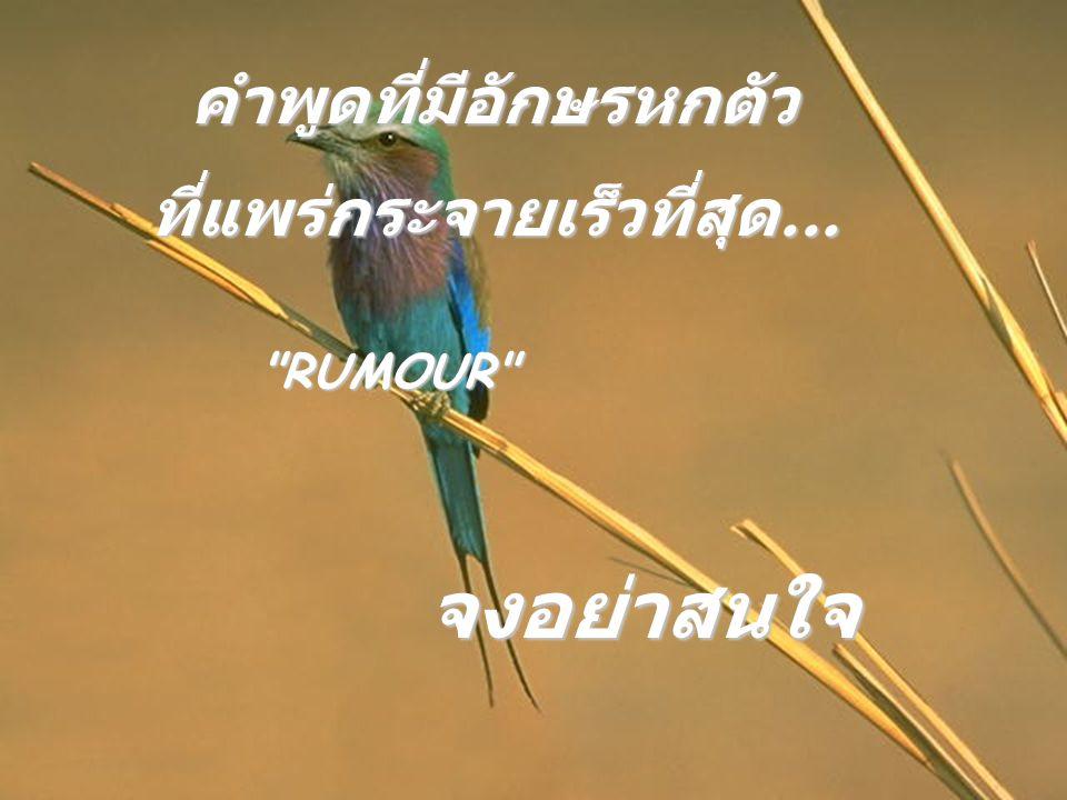 คำพูดที่มีอักษรหกตัว ที่แพร่กระจายเร็วที่สุด... RUMOUR จงอย่าสนใจ