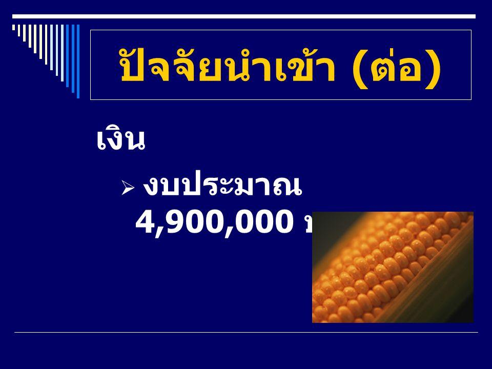ปัจจัยนำเข้า ( ต่อ ) เงิน  งบประมาณ 4,900,000 บาท
