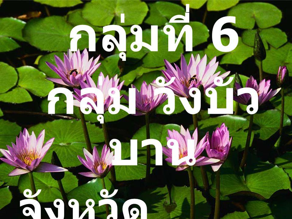 กลุ่มที่ 6 กลุ่ม วังบัว บาน จังหวัด เชียงใหม่ (1-26)