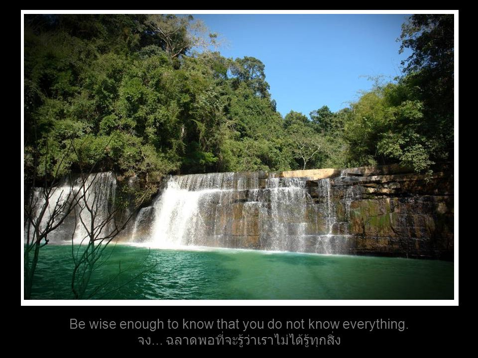 Be wise enough to know that you do not know everything. จง... ฉลาดพอที่จะรู้ว่าเราไม่ได้รู้ทุกสิ่ง