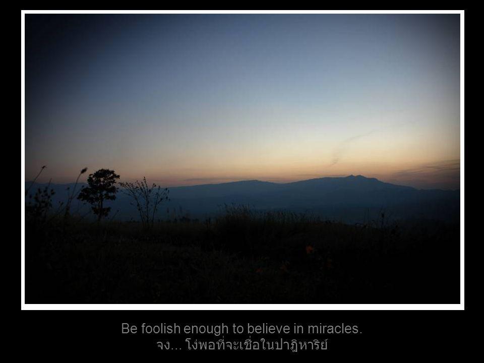 Be foolish enough to believe in miracles. จง... โง่พอที่จะเชื่อในปาฎิหาริย์