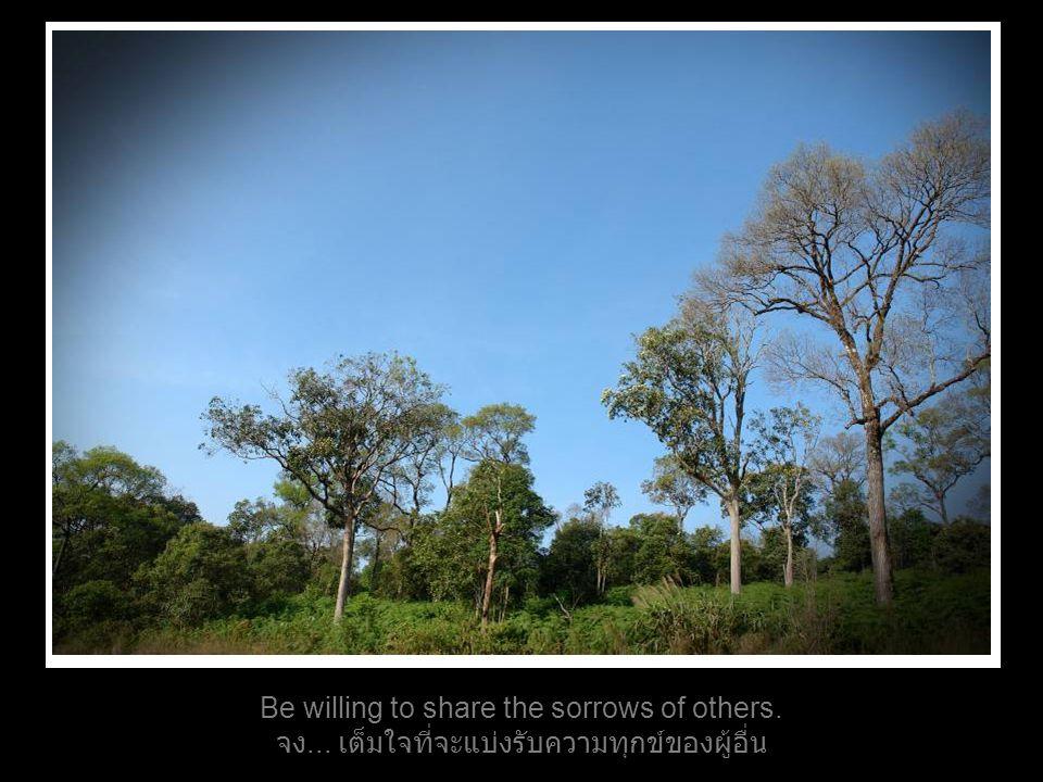 Be willing to share the sorrows of others. จง... เต็มใจที่จะแบ่งรับความทุกข์ของผู้อื่น