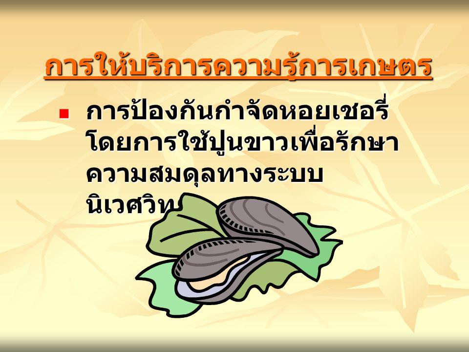 การให้บริการความรู้การเกษตรการให้บริการความรู้การเกษตร การป้องกันกำจัดหอยเชอรี่ โดยการใช้ปูนขาวเพื่อรักษา ความสมดุลทางระบบ นิเวศวิทยา การป้องกันกำจัดห