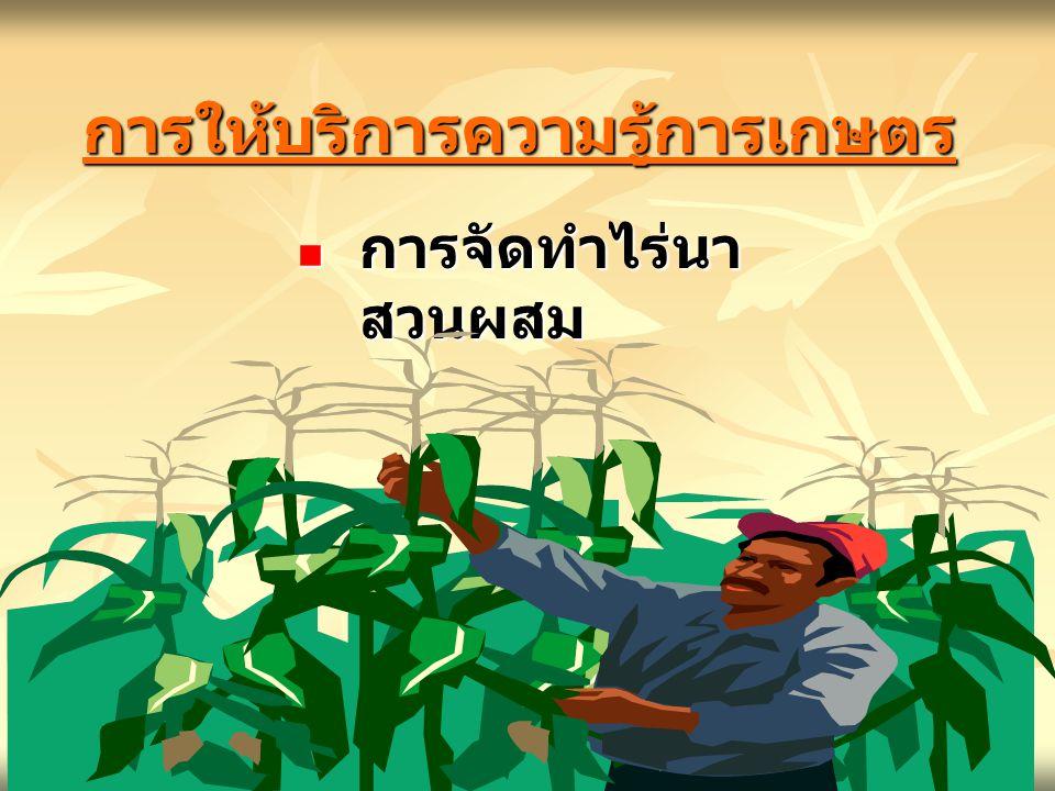 การให้บริการความรู้การเกษตรการให้บริการความรู้การเกษตร การจัดทำไร่นา สวนผสม การจัดทำไร่นา สวนผสม