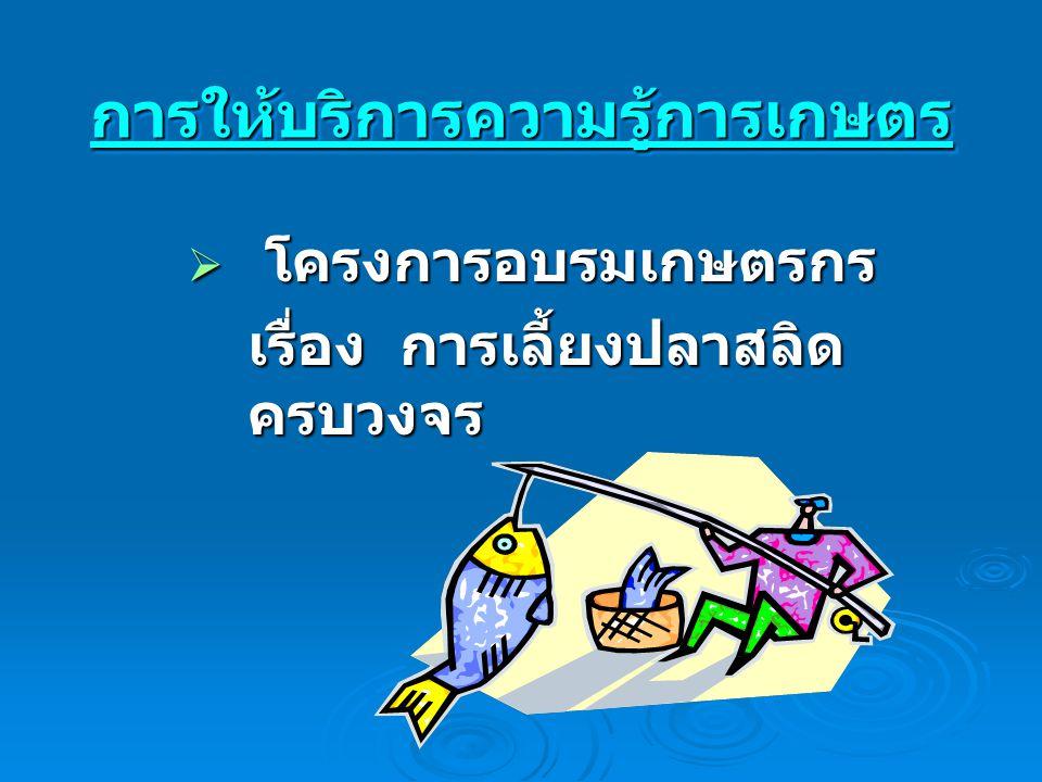 การให้บริการความรู้การเกษตรการให้บริการความรู้การเกษตร  โครงการอบรมเกษตรกร เรื่อง การเลี้ยงปลาสลิด ครบวงจร