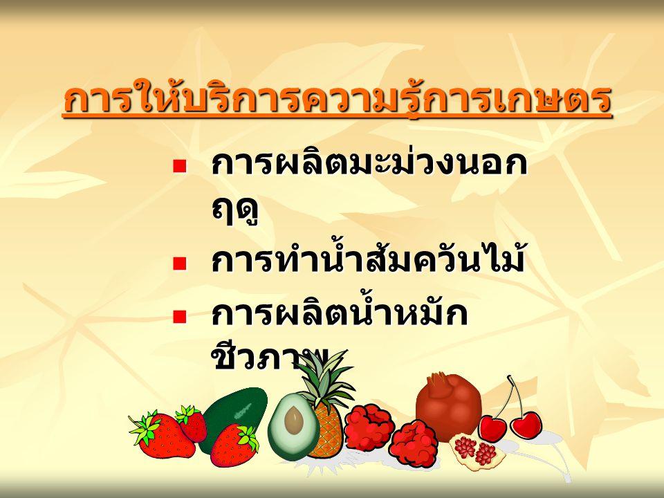การให้บริการความรู้การเกษตรการให้บริการความรู้การเกษตร การทำน้ำส้มควันไม้ การทำน้ำส้มควันไม้ การผลิตน้ำหมัก ชีวภาพ การผลิตน้ำหมัก ชีวภาพ