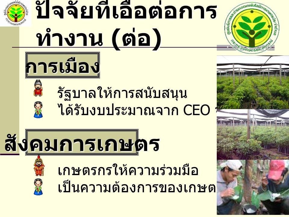 ปัจจัยที่เอื้อต่อการ ทำงาน ( ต่อ ) การเมือง รัฐบาลให้การสนับสนุน ได้รับงบประมาณจาก CEO จังหวัด สังคมการเกษตร เกษตรกรให้ความร่วมมือ เป็นความต้องการของเกษตรกร